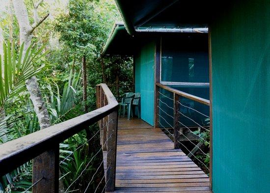 Sanctuary Retreat: Hut Walkway