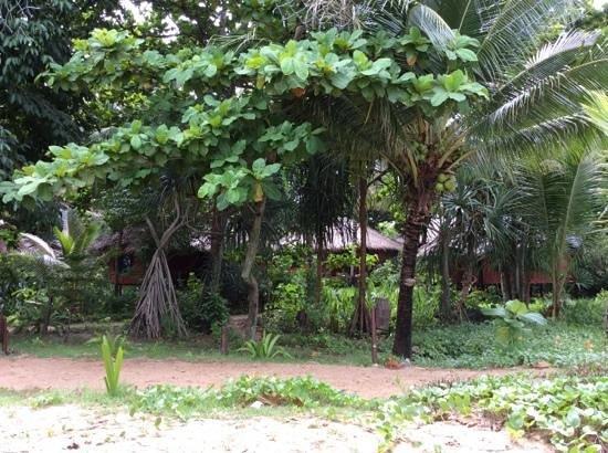 Relax Bay Resort: le stanze a dieci metri dalla spiaggia immerse nel giardino