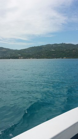 Sunscape Splash Montego Bay: View from glass bottom boat ride