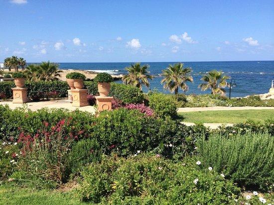 Elysium Hotel: Территория отеля с видом на море