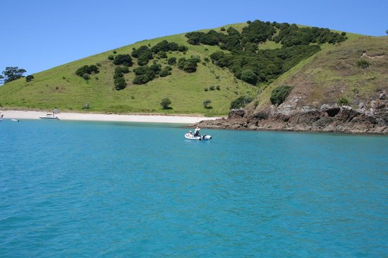Te Vaka Day Sail: Beatuiful bay in the Bay of Islands