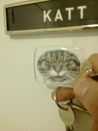 Hotell Hovgard: A cat even on teh key ring, to remind.