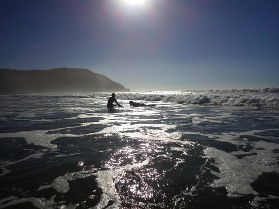 Coffee Shack Backpackers : Surfing Lessons
