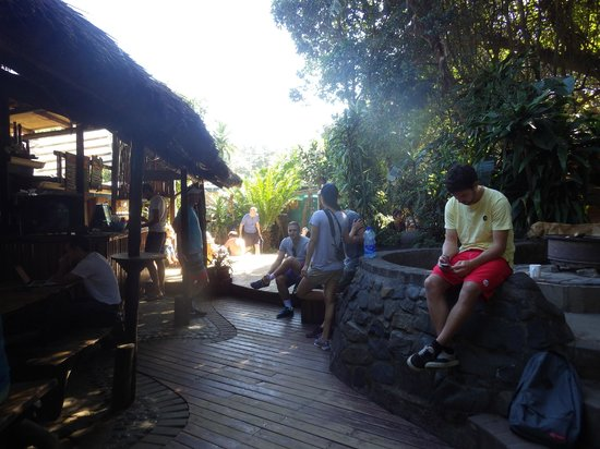 Coffee Shack Backpackers : getting breakfast and gearing up for a hike
