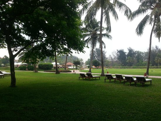 Kenilworth Resort & Spa: Lawns with the sun beds