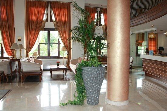 Anthemus Sea Beach Hotel & Spa: Вход