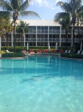 Hilton Fort Lauderdale Marina: La piscina