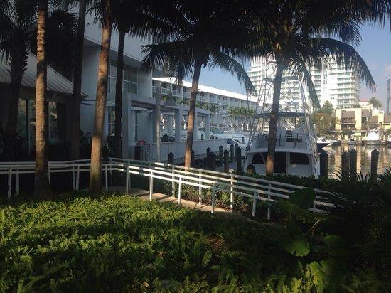 Hilton Fort Lauderdale Marina: Vicino alla piscina