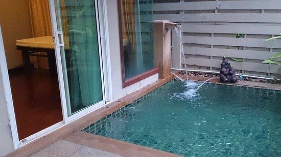 Pilanta Spa Resort: สระว่ายน้ำส่วนตัว