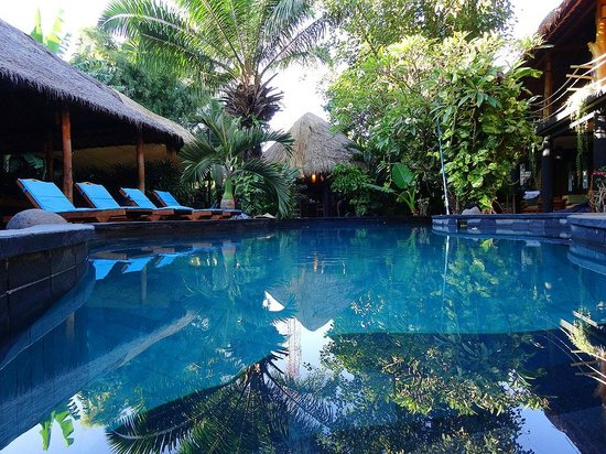 The Green Room Seminyak: Wunderschöner Pool inmitten eines grünen Gartens