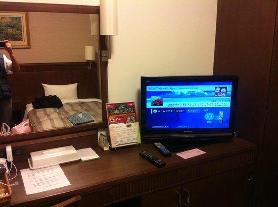 Route-Inn Grantia Ishigaki : こぎれいな室内