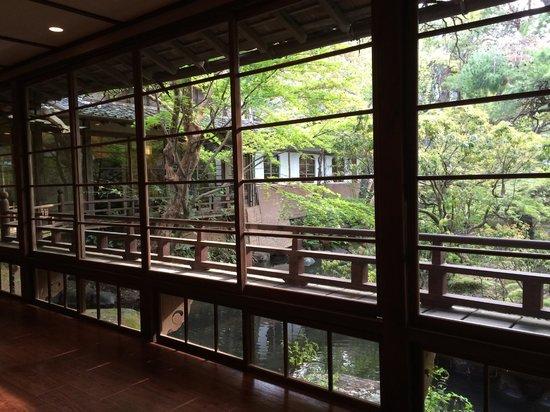 Kikuya : 廊下