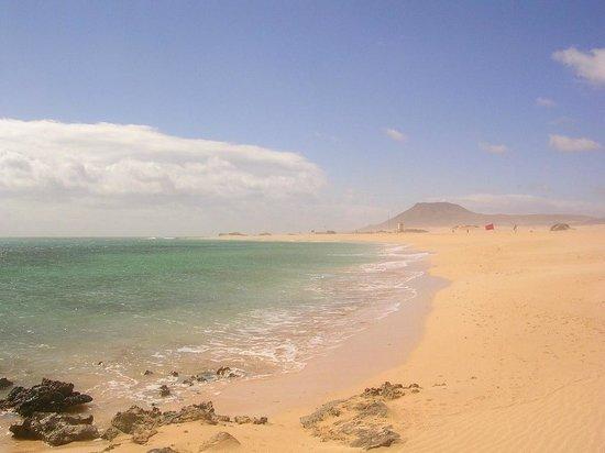 ClubHotel Riu Oliva Beach Resort: ca. 3 Stunden , Richtung Porto Rosario,früher Porto de Los Cabras,Ziegen