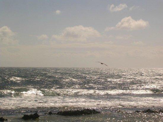 ClubHotel Riu Oliva Beach Resort: Ruhe,wenn man weit geht