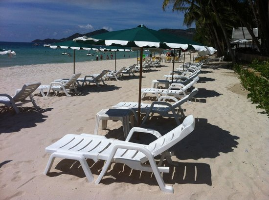 Synergy Samui Resort: Sun lounges at the Hotel