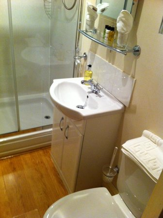 Bronte Guest House : Bathroom (family room)
