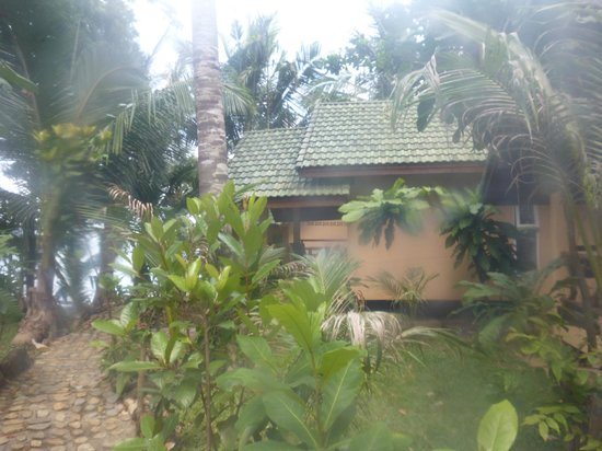 Paradise Palms Resort: Bungalow