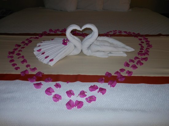 Solmar Resort: The last night the maid staff created this cute little scene on our bed!
