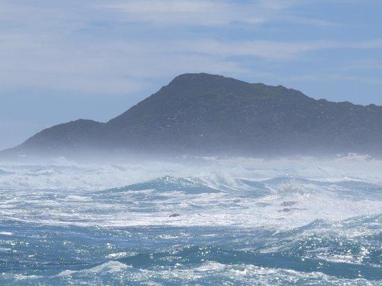 Scarborough Beach: Towards Misty Cliffs
