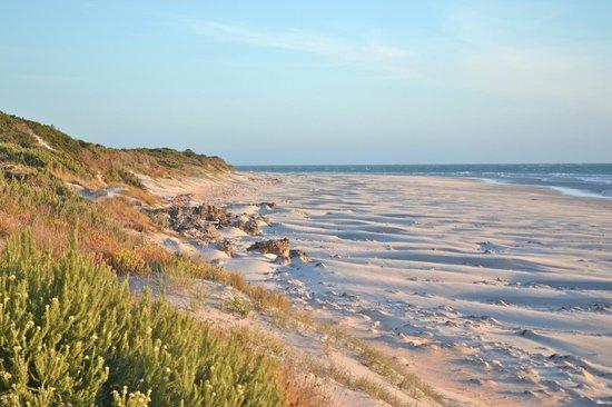 Nudist resorts south australia