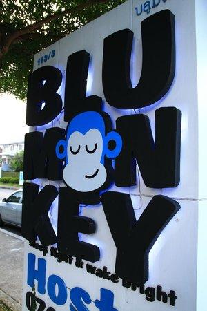 Blu Monkey Bed & Breakfast: Logo
