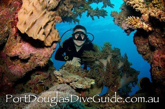 ABC Scuba Diving Port Douglas: April 2014 Jay Wink guiding USA certified divers