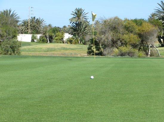 Djerba Golf Club: l'impeccabile tappeto erboso dei green