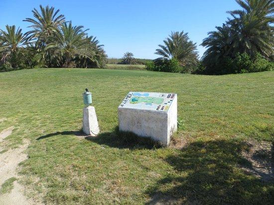 "Djerba Golf Club: Buca 5 - Percorso ""La Mer"""