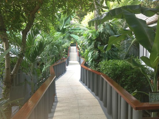 The Surin Phuket: Walkway to hillside rooms
