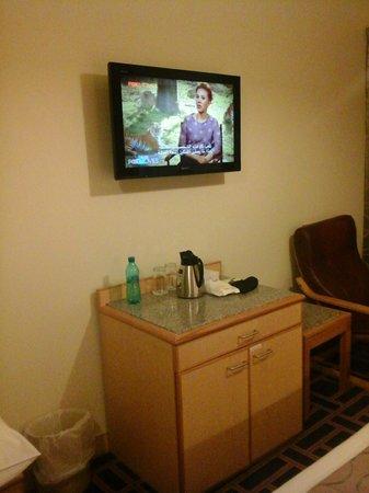 Ambassador Hotel: tv and fridge