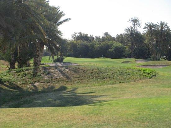Djerba Golf Club: il layout interessante
