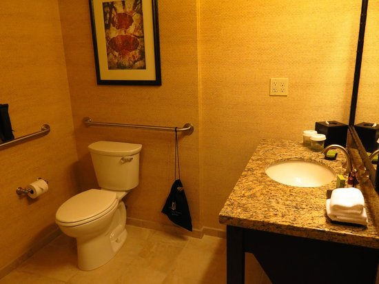 Embassy Suites by Hilton Savannah: Bathroom - wash basin and toilet