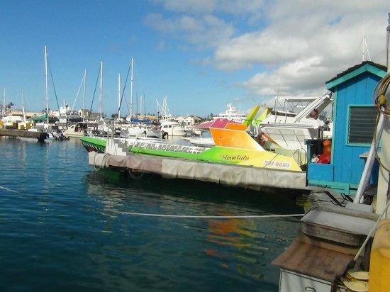 Waikiki Beach : (おまけ)スクリーマーの船 めっちゃ濡れます!楽しい!