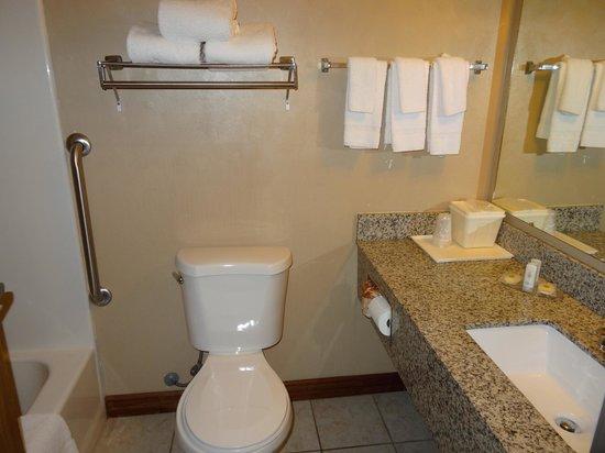 Quality Inn Zion: Ванная