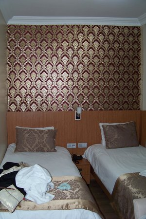 Istanbul Central Hotel: Small double