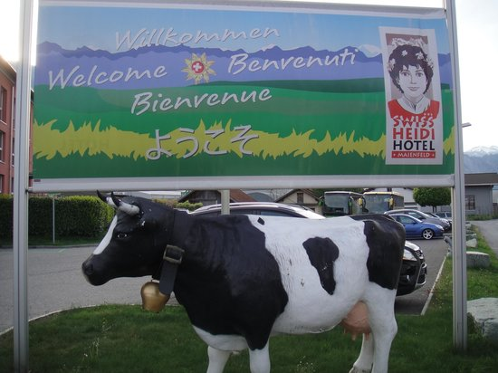 Swiss Heidi Hotel: 看板の前に牛さんが…