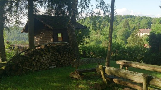 Hotel des Vosges: Le jardin sous-bois et cabane reposant...