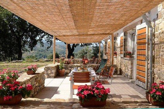 Kepazia guest house