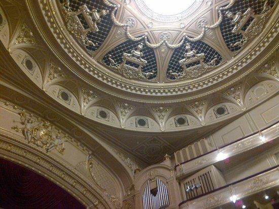 National Opera House of Ukraine: Nice ornaments