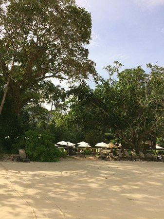 The Datai Langkawi: Beach club