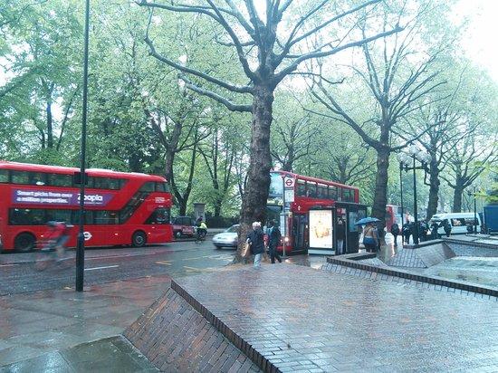 Hilton London Kensington : ホテル前のバス停