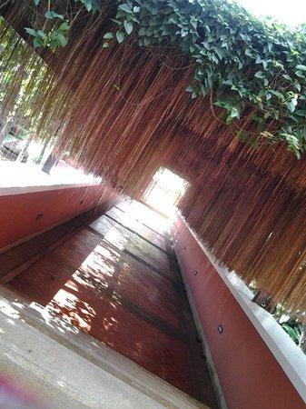 Renaissance Koh Samui Resort & Spa : Inside