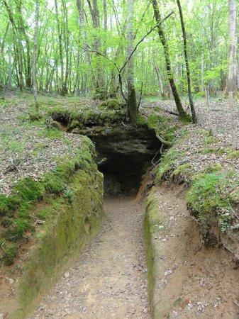 Grotte de Bernifal: C'est bien l'entrée.....