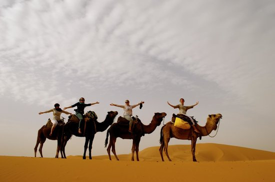Morocco Excursions: On camels