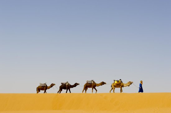 show topic sahara expeditions tour from marrakech recommend morocco