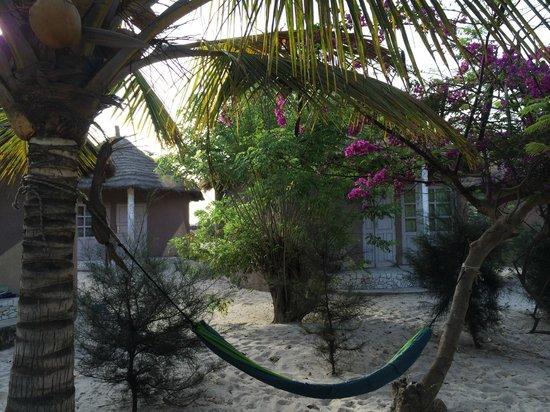 Campement Nanaay : vues du campement