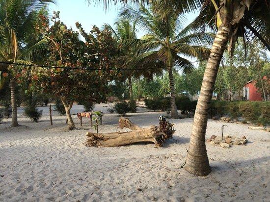 Campement Nanaay : vu du campement