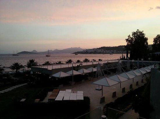 Ambrosia Hotel: view over restaurant