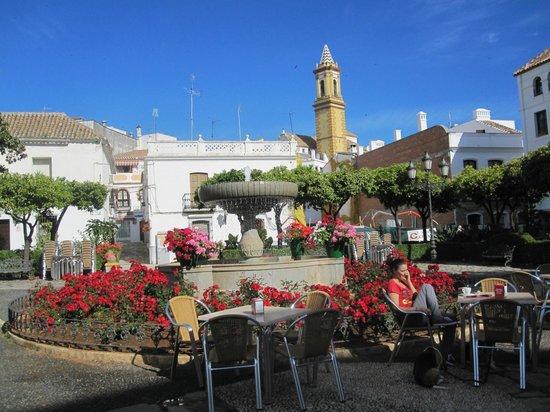 Plaza de las Flores de Estepona: Sunshine and flowers in the Plaza