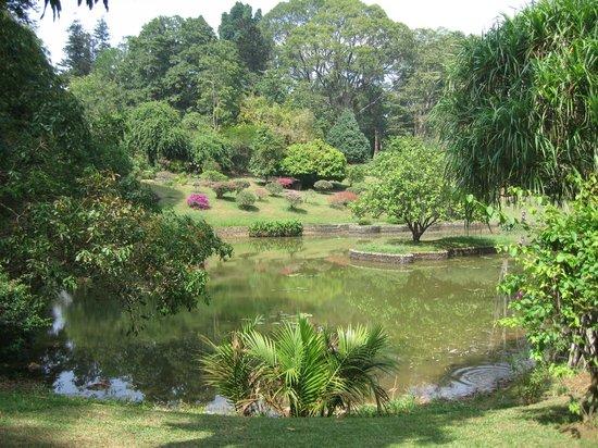 Royal Botanical Gardens: GREEN OASIS